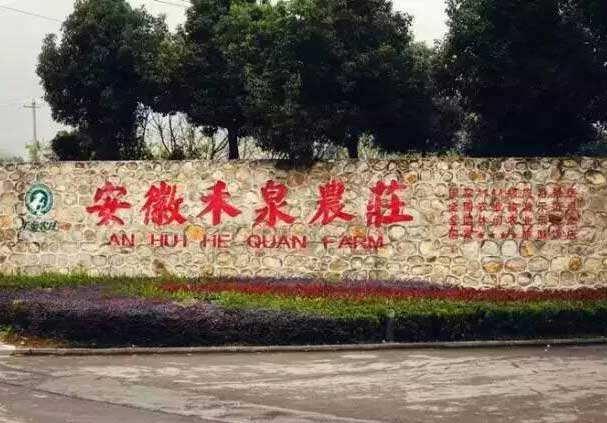 蚌埠禾泉农庄拓展基地